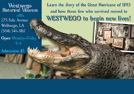 westwego historical museum with alligator